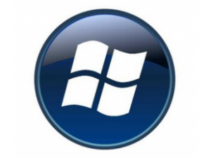 Windows_Phone_logo-300x225